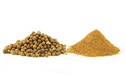 ground allspice before and after hammer mill processing